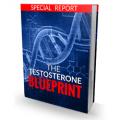 The Testosterone Blueprint