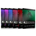 Penetration Orgasm Mastery